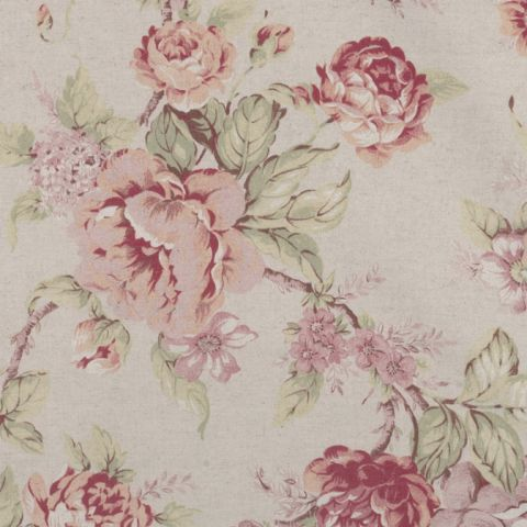Antique Rose - Cream
